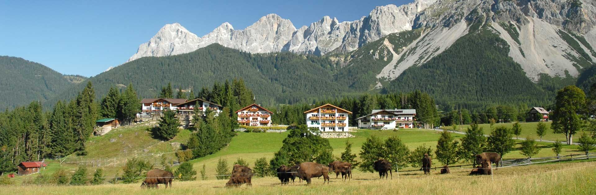 Hotel Garni Ramsauer Alm Panoramabild